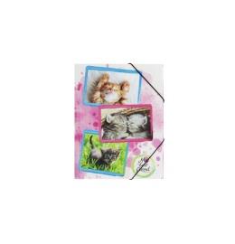 Gummizugmappe Katzen A4 PP 3 Einschlagklappen